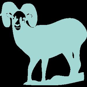 動物・生き物ST-2849