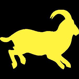 動物・生き物ST-2852