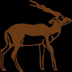 動物・生き物ST-2911