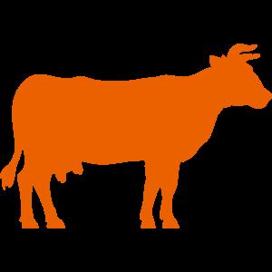 動物・生き物ST-2419