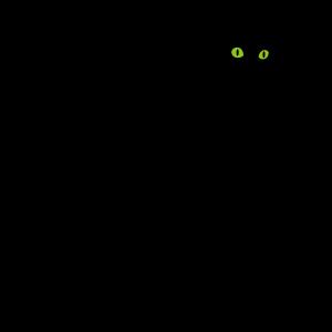 動物・生き物ST-2348