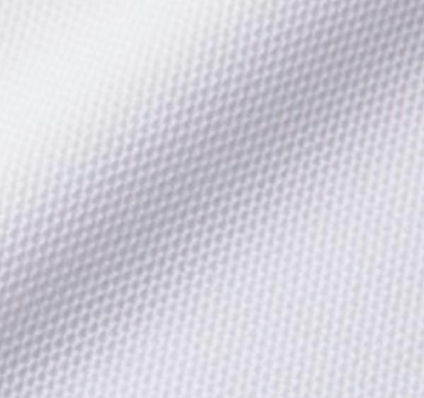 スペシャルドライカノコポロシャツ(ローブリード)〈ウィメンズ〉の生地2
