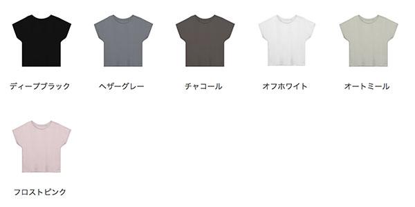 ウィメンズドルマンTシャツのカラー