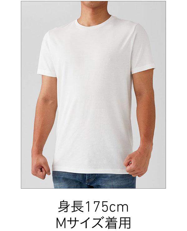 ベーシックスタイルTシャツの着用写真 Mサイズ