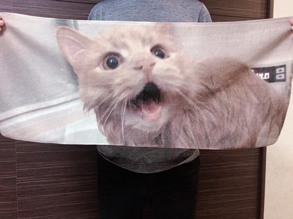 TMIXで全面プリントタオルが発売されたことをきき早速作って見ました!今回は愛猫の写真を全面にプリント。プリントが綺麗に出ていることはもちろん、プリントしていない裏面は柔らかく実用性も十分かなと思います。 20代・男性・ Caffe Latte さん