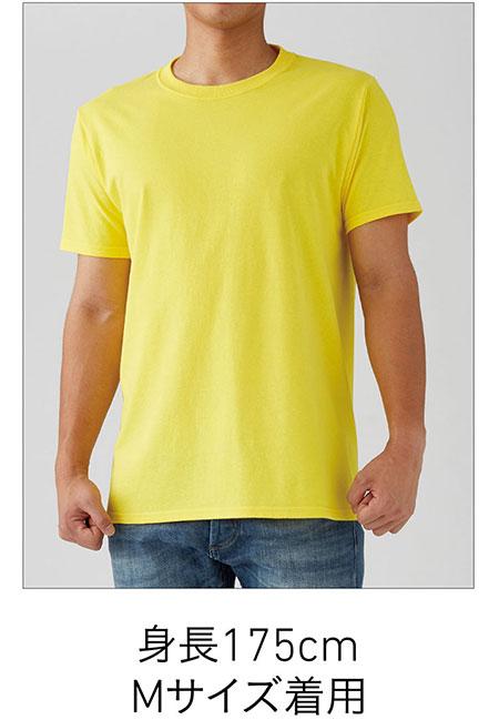 フルーツベーシックTシャツの着用写真 Mサイズ