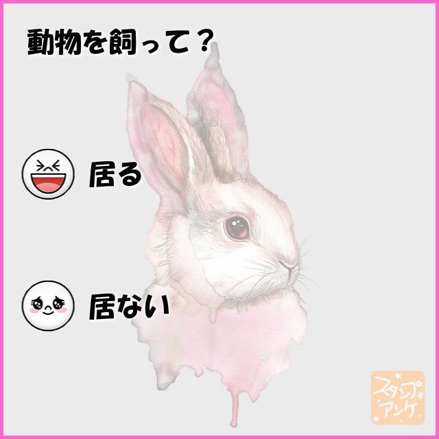 「動物を飼って?」という質問のスタンプアンケ画像