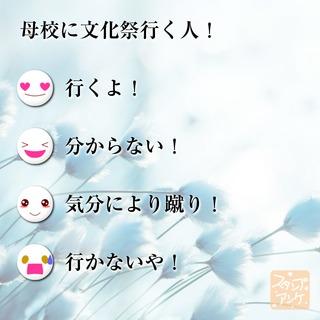 「母校に文化祭行く人!」という質問のスタンプアンケ画像