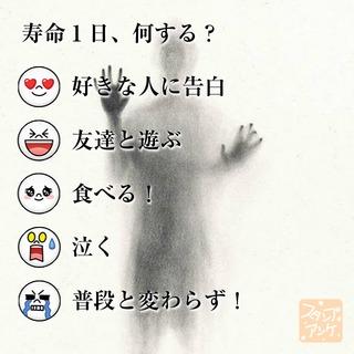 「寿命1日、何する?」という質問のスタンプアンケ画像