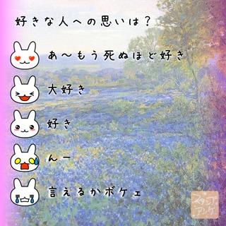 「好きな人への思いは?」という質問のスタンプアンケ画像