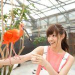 ファン必見!今すぐ手に入れたい西野七瀬さんのおすすめグッズのサムネイル画像