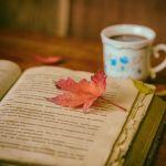 やっぱり恋愛はおもしろい。秋の夜長におすすめラブコメ小説5選!のサムネイル画像