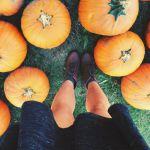 10月はどこ行く何する?関東の大人気ハロウィンイベント3選!のサムネイル画像