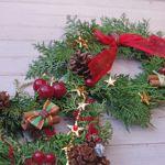クリスマスムードをもっと高めてくれる、おしゃれな植物たちのサムネイル画像