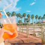 上質&新鮮!【#ロンハーマンカフェ】でインスタ映えする写真を激写せよ!のサムネイル画像