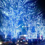 2016六本木イルミネーションスポット&夜景が見えるレストランのサムネイル画像
