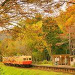都心から1時間、ローカル線で巡るグルメ旅で休日を過ごしてみない?のサムネイル画像