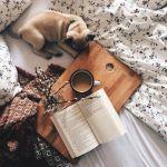 【読み始めたら、とまらない!】じっくり読みたいミステリー10選のサムネイル画像