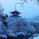 幻想的な雪の世界は《京都》にあり。おすすめ雪景色スポット5選のサムネイル画像