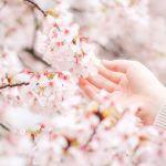 【2017春は出会い運が上昇中!?】恋も仕事もうまくいく♡《3つのキーワード》のサムネイル画像