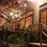 今年も桜の季節が来た♡名スポット別《店内でお花見できちゃうカフェ&レストラン》のサムネイル画像