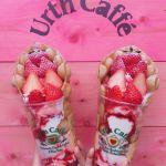 大人女子のつぼドンピシャ♡話題のオーガニックカフェ《Urth Caffe》のサムネイル画像