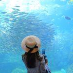 ドキドキな暗さに急接近♡初デートは絶対《水族館》に行くべき!のサムネイル画像