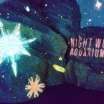 水族館なのに〇〇!?《ナイトワンダーアクアリウム》でトキメキデートのサムネイル画像