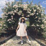 もうすぐ秋本番!関東近郊のフォトジェニックな《秋の花畑》4選♡のサムネイル画像