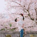 お手本にすべき!韓国カップルの素敵な《サプライズ》まとめ♡のサムネイル画像