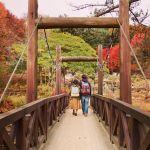 ロマンティックなデートがしたい♡関東近郊【紅葉狩りスポット】3選のサムネイル画像