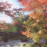 宮城においでよ♡おすすめ秋スポット日本三景【松島】はもう行った?のサムネイル画像