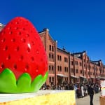 苺で美人になぁれ♡2/2スタート【ストロベリーフェス】の楽しみ方のサムネイル画像