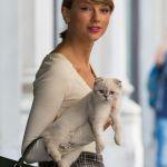 かっ、可愛すぎる!!セレブ歌手テイラー・スウィフトの愛猫たち!のサムネイル画像