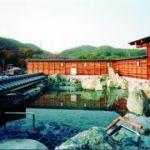【保存版】大阪のおススメ日帰り温泉ベスト3をご紹介しますのサムネイル画像
