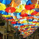 いつか活躍のチャンスを!こだわりのブランドで選ぶ折りたたみ傘のサムネイル画像