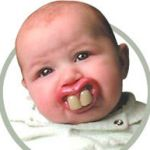 芸能人は歯が命!だけど出っ歯でも頑張ってる芸能人もいるよ~!のサムネイル画像