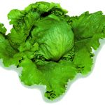 サラダだけじゃない!レタスを使った簡単でおいしいレシピまとめのサムネイル画像