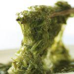 栄養豊富!めかぶのおすすめアレンジレシピまとめ【15選】のサムネイル画像