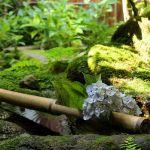 ★落ち着いた雰囲気が美しい!ためになる和風の庭作りの基礎知識★のサムネイル画像
