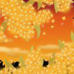 キンモクセイ=トイレの芳香剤はもう古い?キンモクセイの香水が人気のサムネイル画像