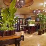 癒し効果や空気清浄効果も!店やオフィスに観葉植物を置く利点とは?のサムネイル画像