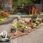 【画像あり】ガーデニングにオススメの育てやすい春の花ご紹介!のサムネイル画像