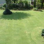芝生のあるお庭で、ガーデニングをするのは、楽しいですよね♪のサムネイル画像