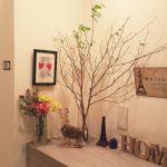 あなたの好きな花は? ? 女性が好むフラワーランキング TOP10!のサムネイル画像