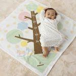 気になる!月齢別赤ちゃんのサイズと赤ちゃんの服のサイズについて!のサムネイル画像