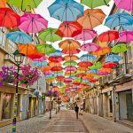 おすすめのブランド人気折りたたみ傘を一挙にご紹介します♪のサムネイル画像