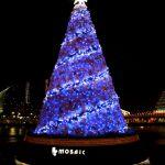 オシャレに飾り付けて、クリスマスの雰囲気を盛り上げよう!のサムネイル画像