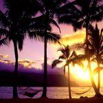 低予算で新婚旅行でハワイをたくさん満喫して思い出を作ろう♡のサムネイル画像