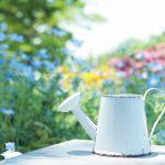 初心者さん必見!初歩から始めるガーデニング!おしゃれな庭造り☆のサムネイル画像